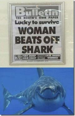 woman beats off shark2