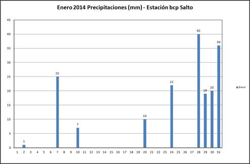 Precipitaciones (Enero 2014)