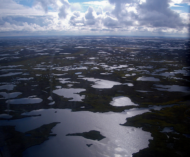 The Yukon-Kuskokwim delta is in a state of flux as permafrost and sea ice melt. JWorley / flickr