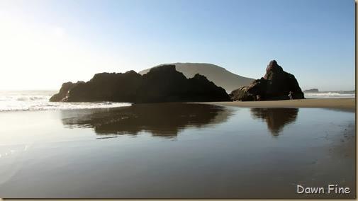 Harris Beach_139