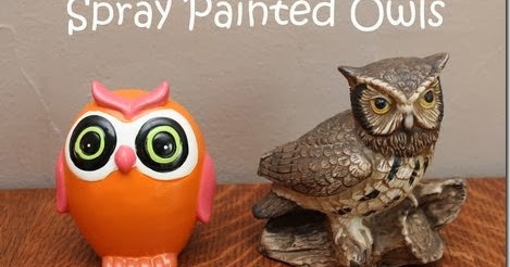 projects around the house spray painted owls. Black Bedroom Furniture Sets. Home Design Ideas