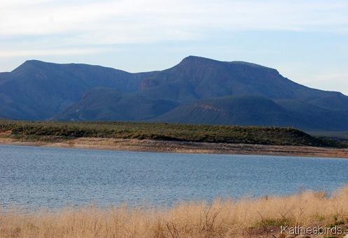 4. Roosevelt Lake