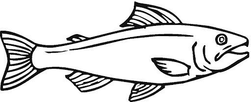 Dibujos de salmones para colorear for Salmon coloring pages
