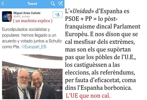 Unitat d'Espanha al Parlament Europèu