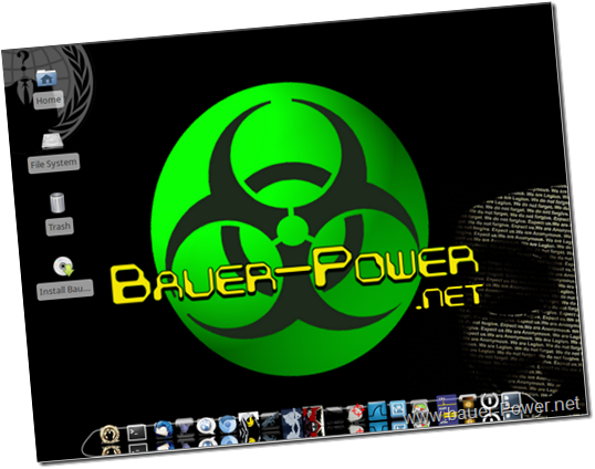 www.Bauer-Power.net