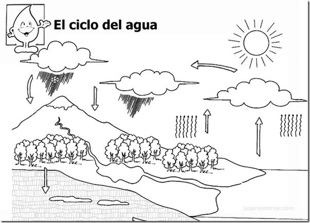 ciclo del agua5