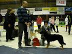 BIS-vinnaren valp Engie Luzanske Hvozdy, Chodský pes med ägaren Sandra Siverman, Borlänge och domaren Joel Lantz..jpg