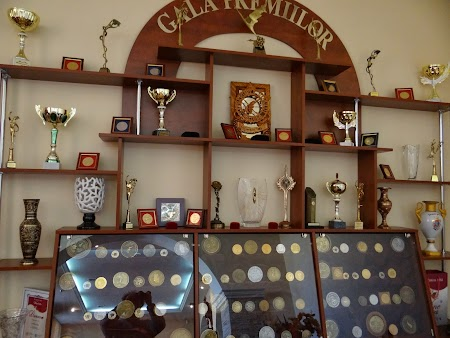 Barza Alba Balti: Medalii concursuri internationale