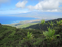 View of Maui from near the top of the ridge.