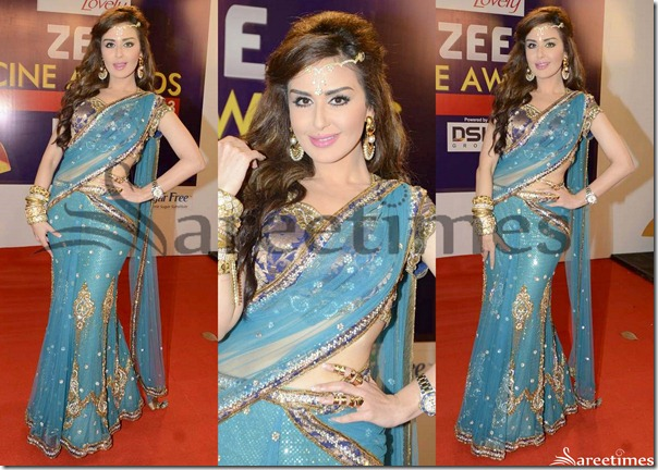 Embroidery_Netted_Saree