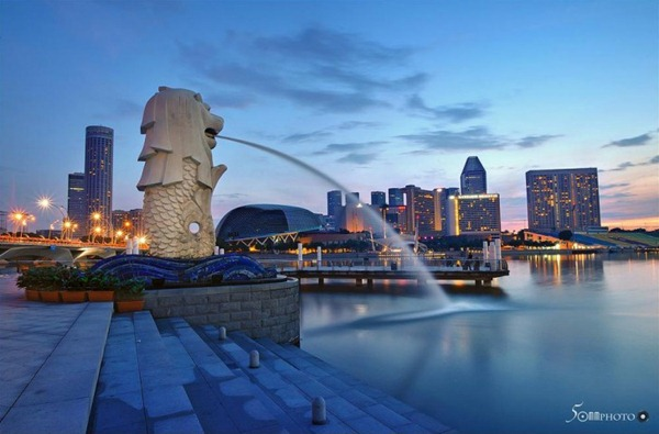 السنغافورة السنغافورة