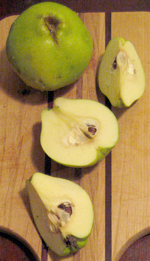 Quarter quinces with a sharp knife before cooking; peel if desired.