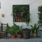 Finca lo Martin courtyard
