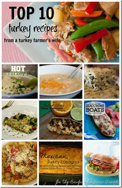 top 10 turkey recipes