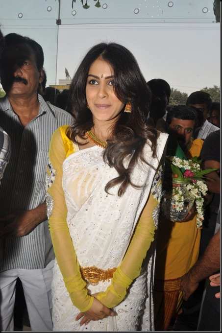genelia-in-saree