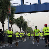 Pet Express Doggie Run 2012 Philippines. Jpg (50).JPG