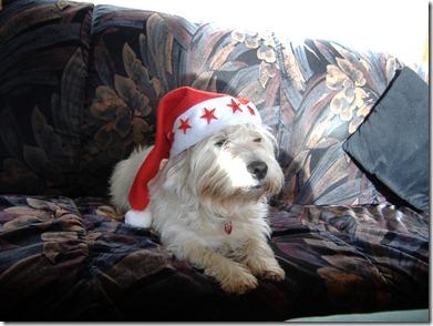 2006_11 Weihnachtsmax (6)