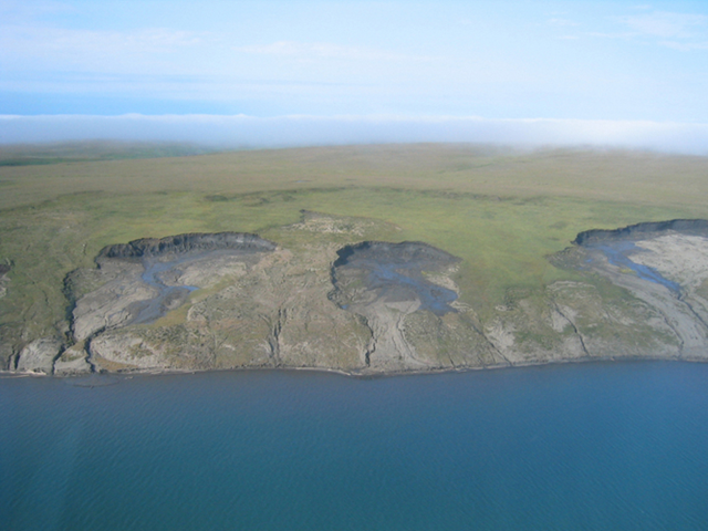 Large slumps of coastal land are caused by the thawing and erosion of ice-rich permafrost. As a result, large quantities of sediment are introduced into the coastal ecosystem, which alters the food web. Hugues Lantuit / Alfred Wegener Institute via NPR