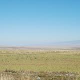 Tianshan - Paysage prairie et montagne