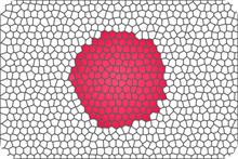 Japonesa~2