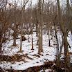 inverno_23_20101008_1703760370.jpg
