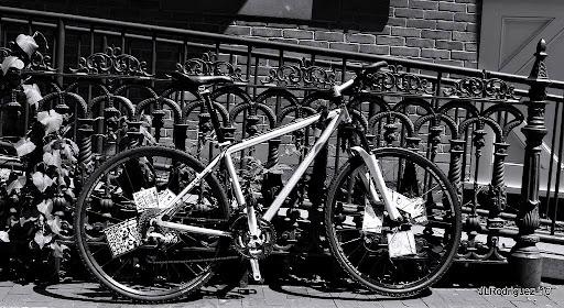 Hartford, Noir et blanc,