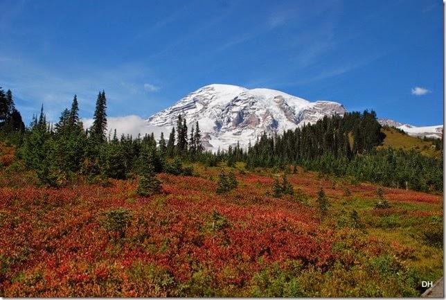 09-28-14 A Rainier NP (99)