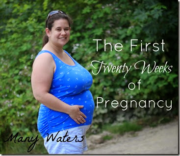 Many Waters The First Twenty Weeks of Pregnancy