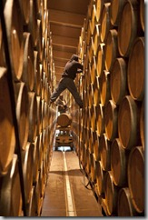 Barrel room at Ridge Vineyards, Lytton Springs, Geyserville, Sonoma County