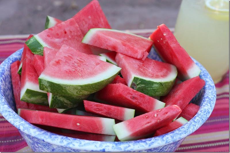 2011 08 13 fullmoon watermelonweb