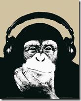 monos piensan blogdeimagenes (9)