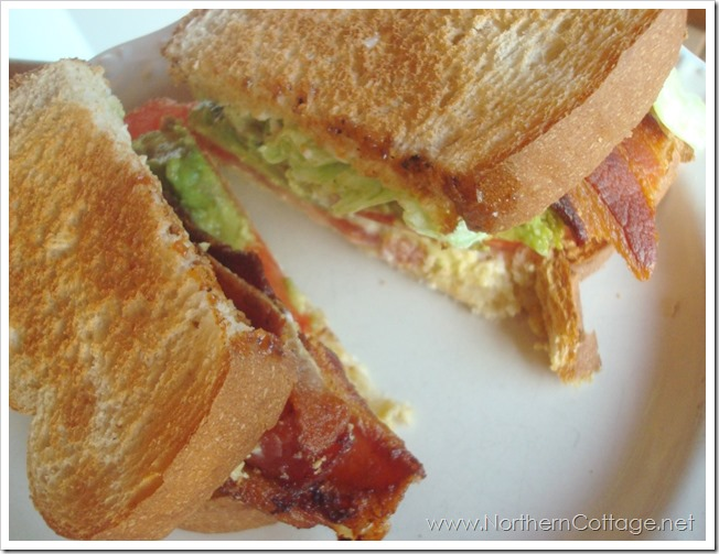 bacon lettuce tomato with avocado @ NorthernCottage.net