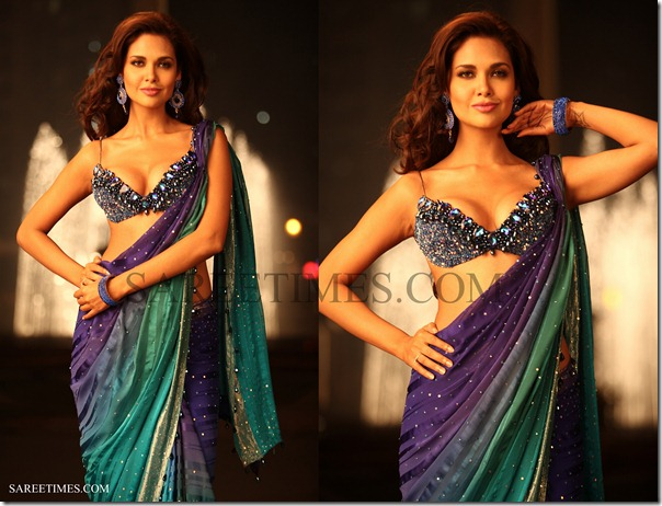 Esha_Gupta_Saree