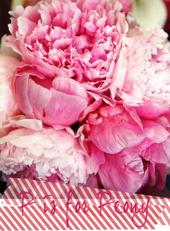 p-is-for-peony