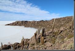 71. Uyuni island