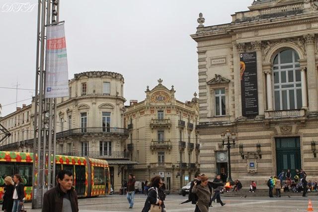 Montpellier 027