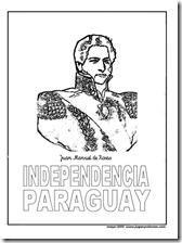 rosas paraguay jugarycolorear 1 1