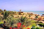 Фото 9 LTI Paradisio Beach Hotel