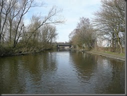 Titford Canal 031