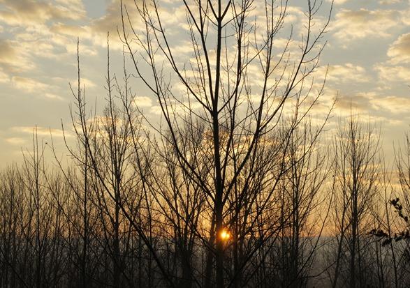 foto amanhecer 4