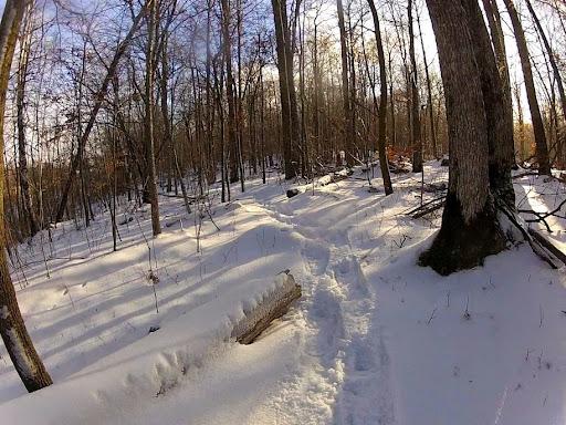 Fresh snowshoe track on twin lakes singletrack