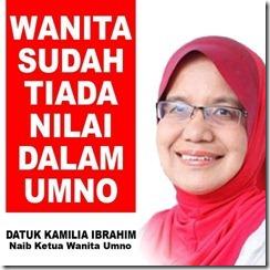 Lagi 57 ahli UMNO dipecat kerana tanding BEBAS