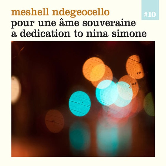 Meshell ndegeocello dedication to nina simone