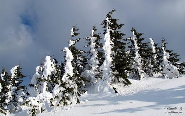 Ciucas-Bratocea-iarna_1840_rw.jpg