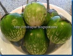 Chitra Pal South Indian Style Baingan or Eggplant (9)