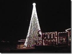 12.05.00 - Tree at Old Tucson