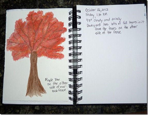 Nature Journal - Water Color Crayons