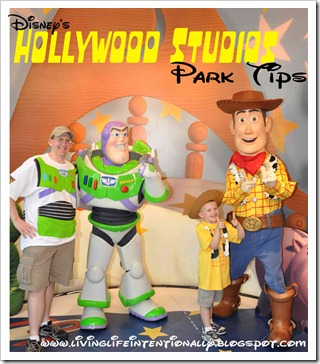 hollywood studios park tips from mom of toddler preschooler and elementary aged kids