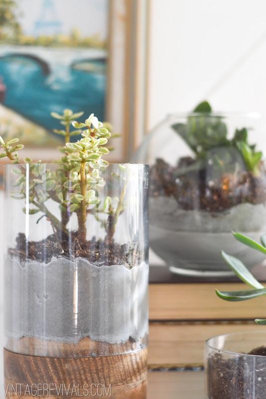 Concrete and Glass Succulent Planter vintagerevivals.com-2