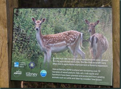 8-deer-sign